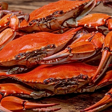 Boiled Blue Crab